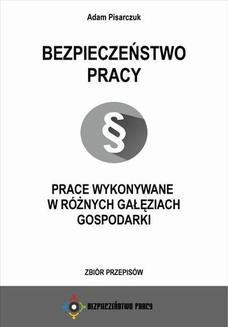 Ebook Bezpieczeństwo pracy. Prace wykonywane w różnych gałęziach gospodarki. Zbiór przepisów pdf