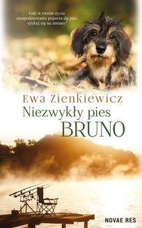 Ebook Niezwykły pies Bruno pdf