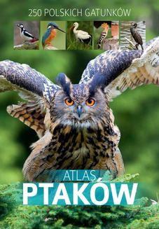 Chomikuj, ebook online Atlas ptaków. Dominik Marchowski