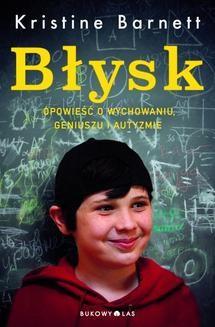 Ebook Błysk pdf