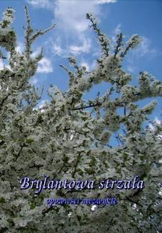 Chomikuj, ebook online Brylantowa strzała. Opowieści niezwykłe. Antologia