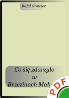 Ebook Co się zdarzyło w Brzezinach Małych? pdf