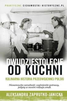 Ebook Dwudziestolecie od kuchni pdf