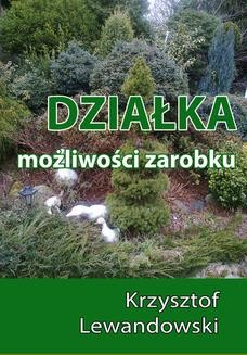Ebook Działka. Możliwości zarobku pdf