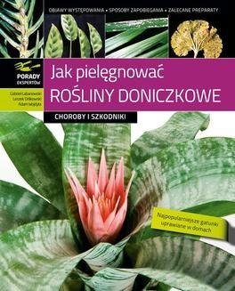 Ebook Jak pielęgnować rośliny doniczkowe pdf