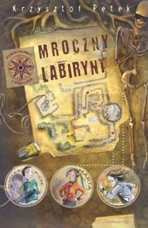 Chomikuj, ebook online Mroczny labirynt. Petek Krzysztof