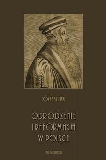 Ebook Odrodzenie i Reformacja w Polsce pdf