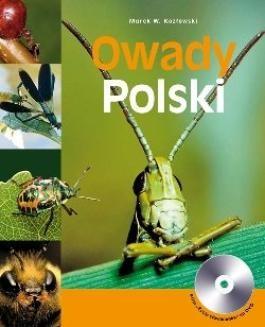 Chomikuj, ebook online Owady Polski, tom I. Marek W. Kozłowski