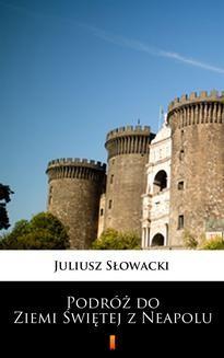 Ebook Podróż do Ziemi Świętej z Neapolu pdf
