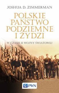 Chomikuj, ebook online Polskie Państwo Podziemne i Żydzi w czasie II wojny światowej. Joshua D. Zimmerman