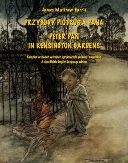 Ebook Przygody Piotrusia Pana pdf