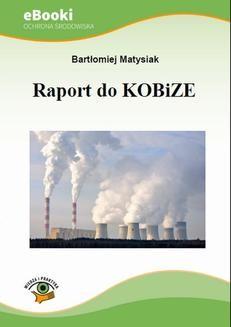 Chomikuj, ebook online Raport do KOBiZE. Bartłomiej Matysiak
