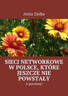 Ebook Sieci networkowe w Polsce, które jeszcze nie powstały, a powinny! pdf