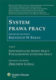 Ebook System prawa pracy. TOM IV. Indywidualne prawo pracy. Pozaumowne stosunki pracy pdf