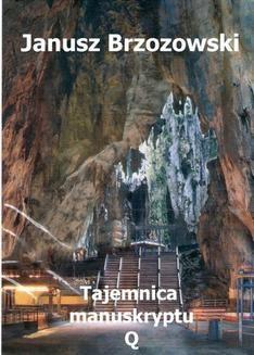 Ebook Tajemnica manuskryptu Q pdf