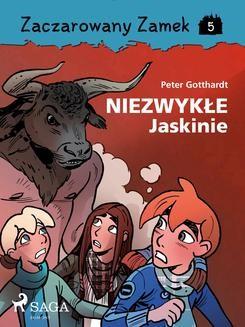 Chomikuj, ebook online Zaczarowany Zamek 5 – Niezwykłe Jaskinie. Peter Gotthardt null