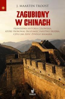 Ebook Zagubiony w Chinach pdf